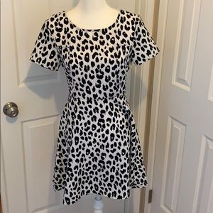 Collective concepts skater dress